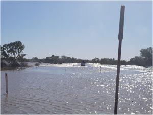 חוצים את הנהר בדרך לברצוויל