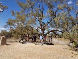 כל החברים ליד עץ המשלחת